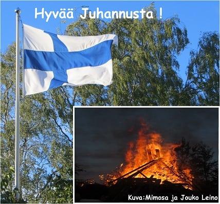 jussialeinot20150618