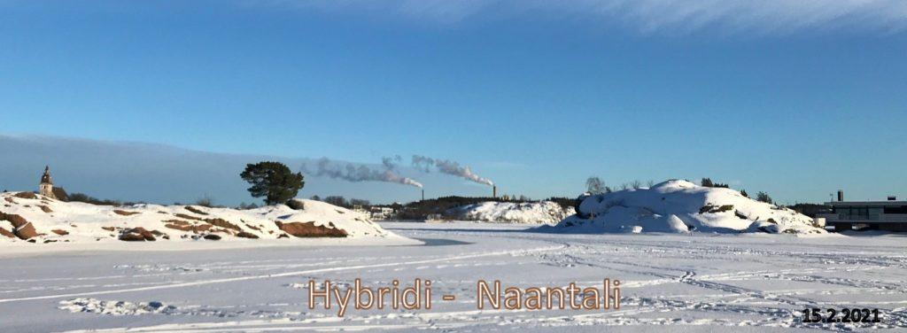 pöllönklopin takaa Hybridi Naantali 20210215