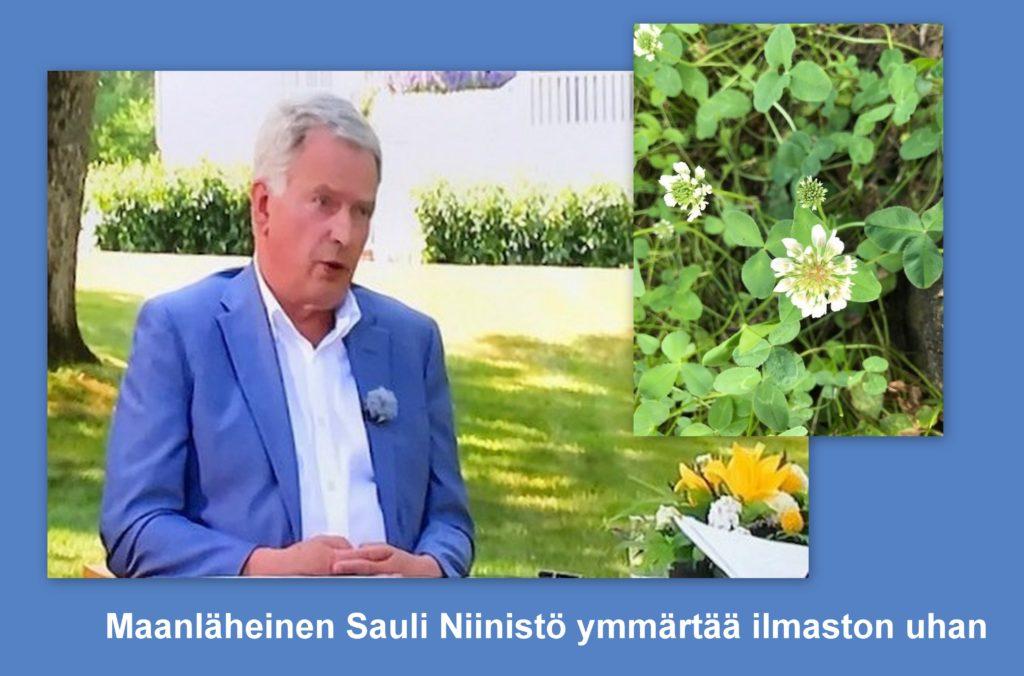 Sauli Niinistö ja valkoapila 20210716